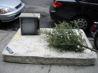 a tree and a television set do the nasty
